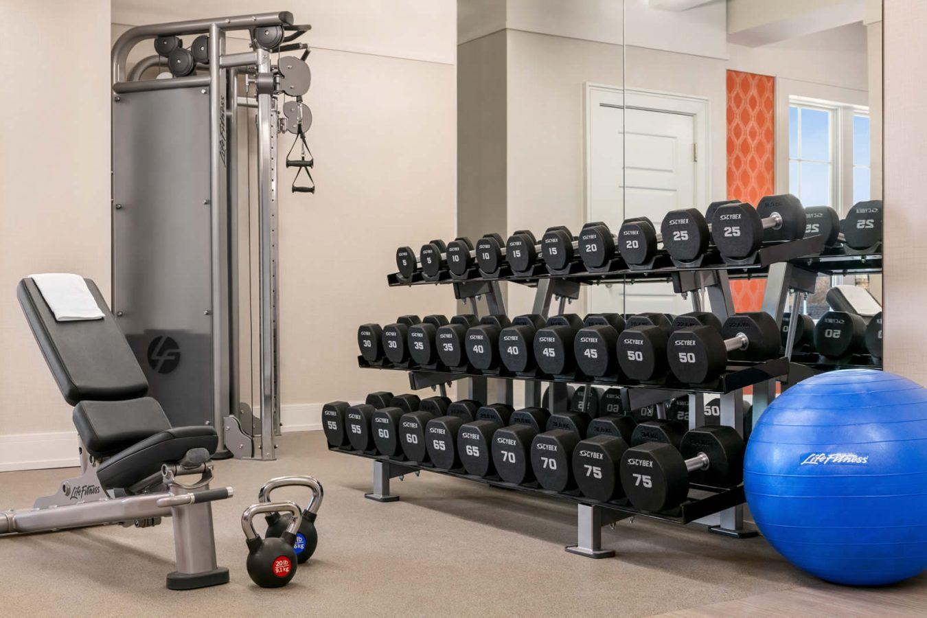 Weights in the fitness center